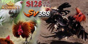 Situs Sv388