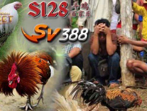 Live Sv388 Online